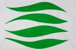 Waves Hockney Green