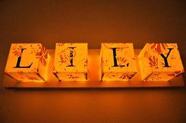 Els Marleyn Floral ABC Lightbox