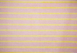 Agnes Horizontal Stripe Pink & Lime 270